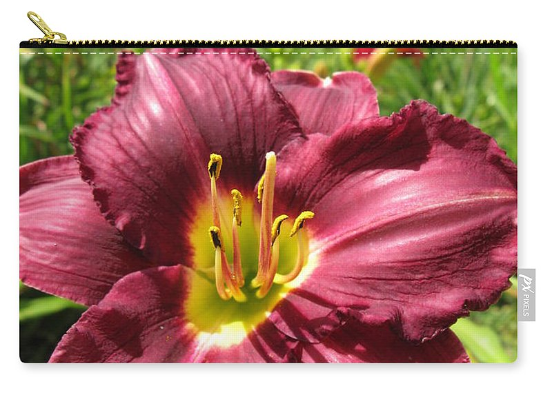 Viette Carry-all Pouch featuring the photograph Viette's Daylily. Dark Purple 01 by Ausra Huntington nee Paulauskaite