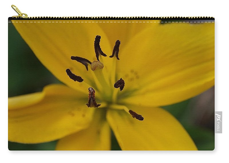 Yellow Carry-all Pouch featuring the photograph View From Above by Teri Schuster
