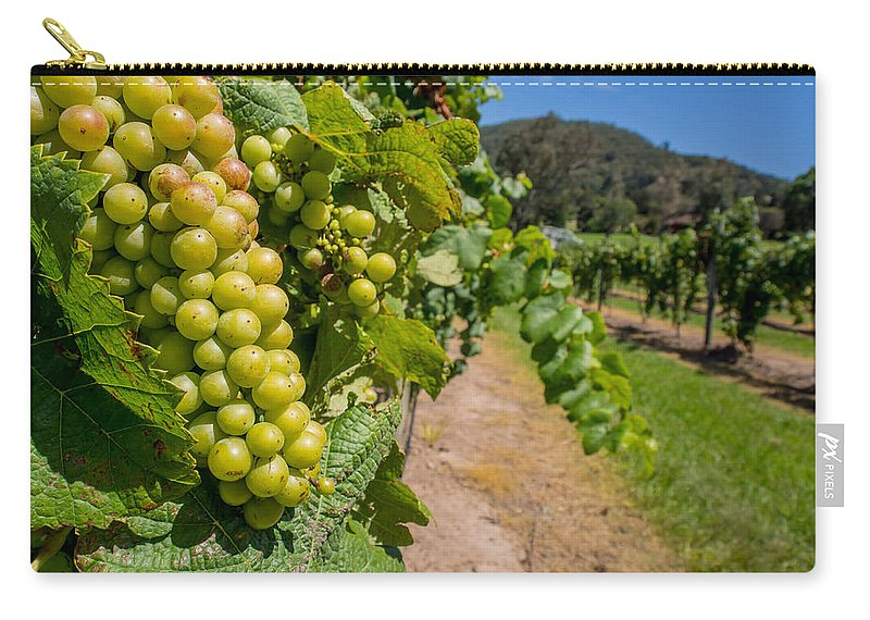 Vineyard Carry-all Pouch featuring the photograph Vineyard Grapes by Kaleidoscopik Photography