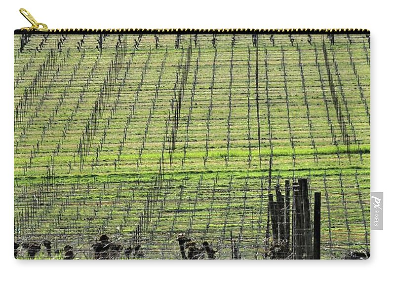 Anne Carry-all Pouch featuring the photograph Vineyard Lines 23036 by Jerry Sodorff