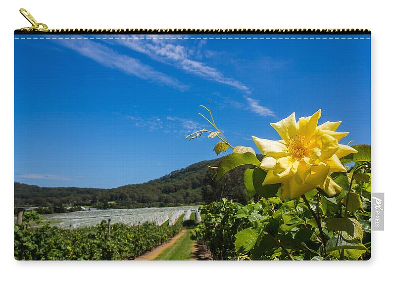 Vineyard Carry-all Pouch featuring the photograph Vineyard's Companion Rose by Kaleidoscopik Photography