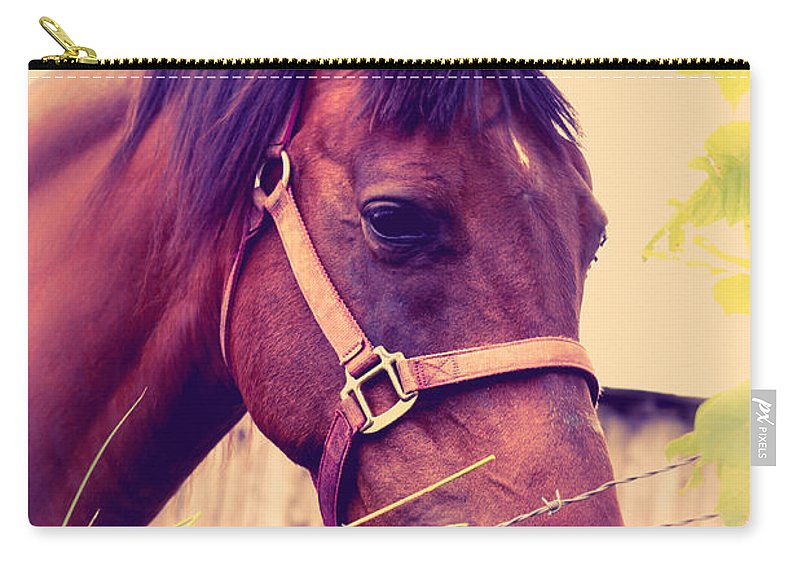 Ron Pate Carry-all Pouch featuring the photograph Vintage Horse by Ron Pate