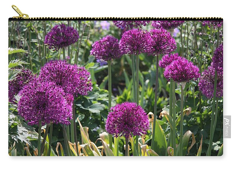 Flowers Carry-all Pouch featuring the photograph Violet Flowerbed by Christiane Schulze Art And Photography