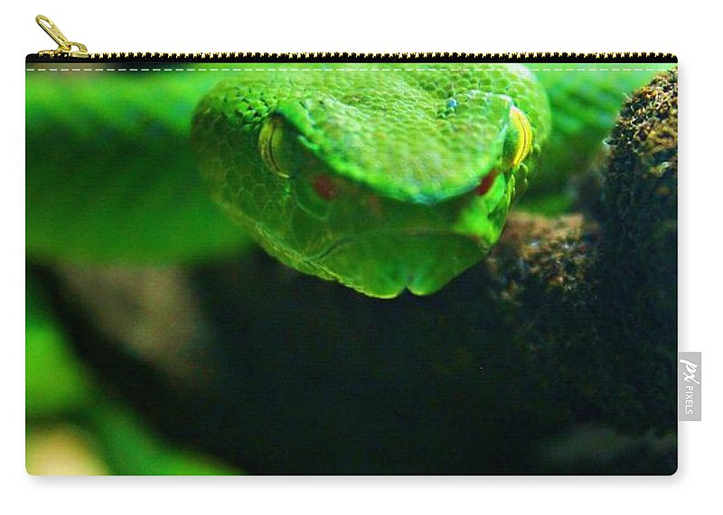 Viper Carry-all Pouch featuring the photograph Viper by Vicki Dreher