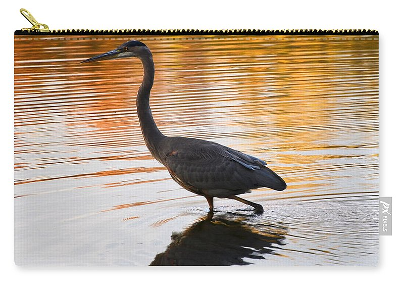 Blue Heron Carry-all Pouch featuring the photograph Wading For You by Judy Wolinsky