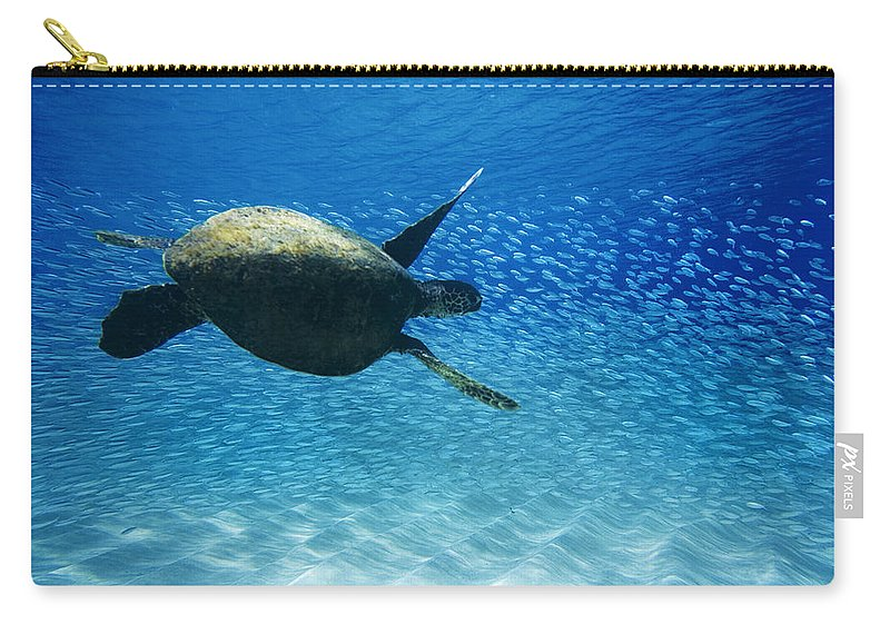 Under Water Carry-all Pouch featuring the photograph Waimea Turtle by Sean Davey