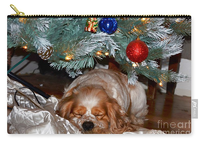 Christmas Carry-all Pouch featuring the photograph Waiting For Santa by Debbie Portwood