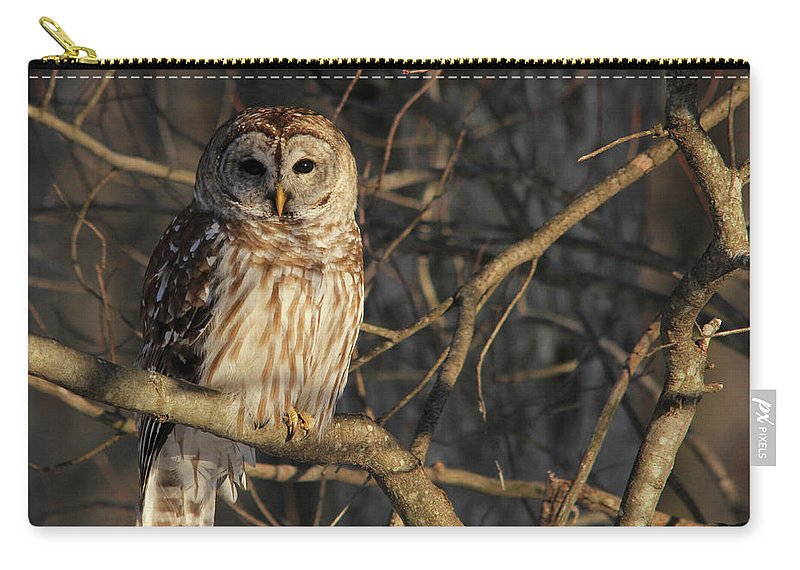 Barred Owl Carry-all Pouch featuring the photograph Waiting For Supper by Lori Deiter