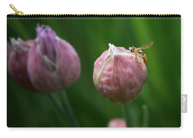 Chives Carry-all Pouch featuring the photograph Waiting On Chive by Susan McMenamin