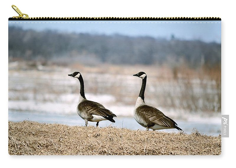Geese Carry-all Pouch featuring the photograph Waiting On Spring by Bonfire Photography