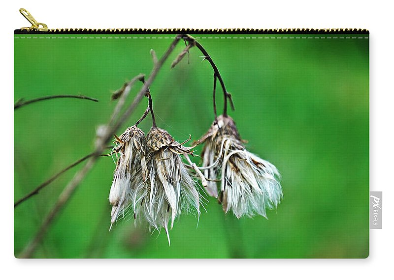 Waiting On The Wind Carry-all Pouch featuring the photograph Waiting On The Wind by Bill Cannon