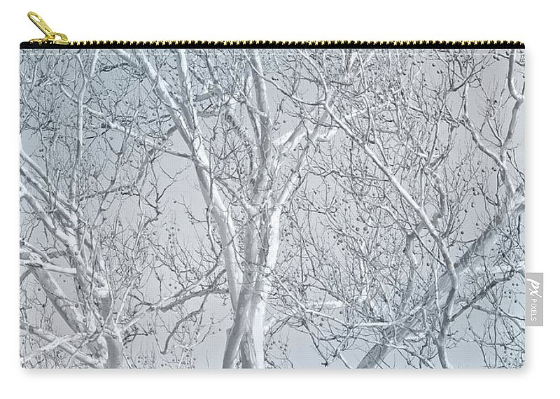 Sycamore Carry-all Pouch featuring the photograph Waiting To Be Clothed by Ann Horn