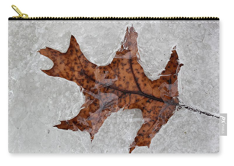 Leaf Carry-all Pouch featuring the photograph Waiting To Be Free 3 by Mary Bedy