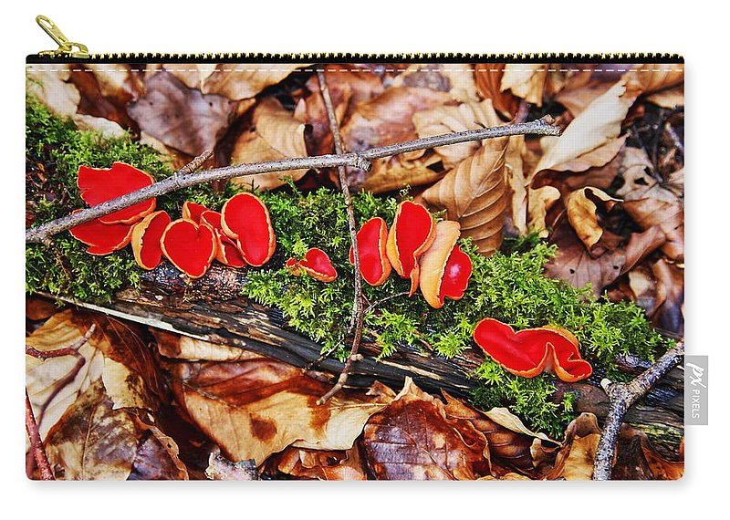 Abstract Carry-all Pouch featuring the photograph Walk In The Woods by Aidan Moran