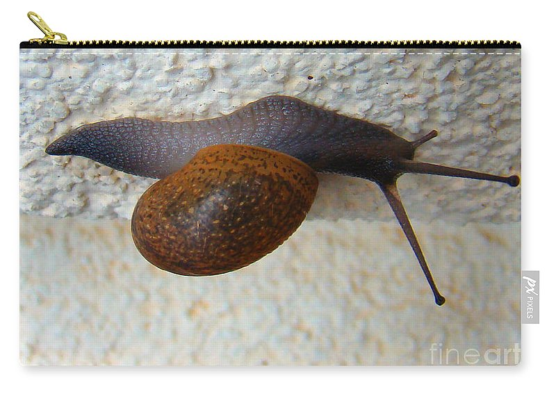 Garden Snail Carry-all Pouch featuring the photograph Wall Snail 2 by Nancy L Marshall