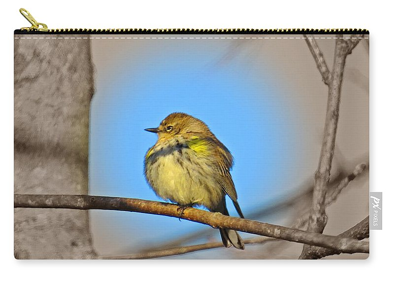Female Myrtle Warbler Carry-all Pouch featuring the photograph Warbler by MTBobbins Photography