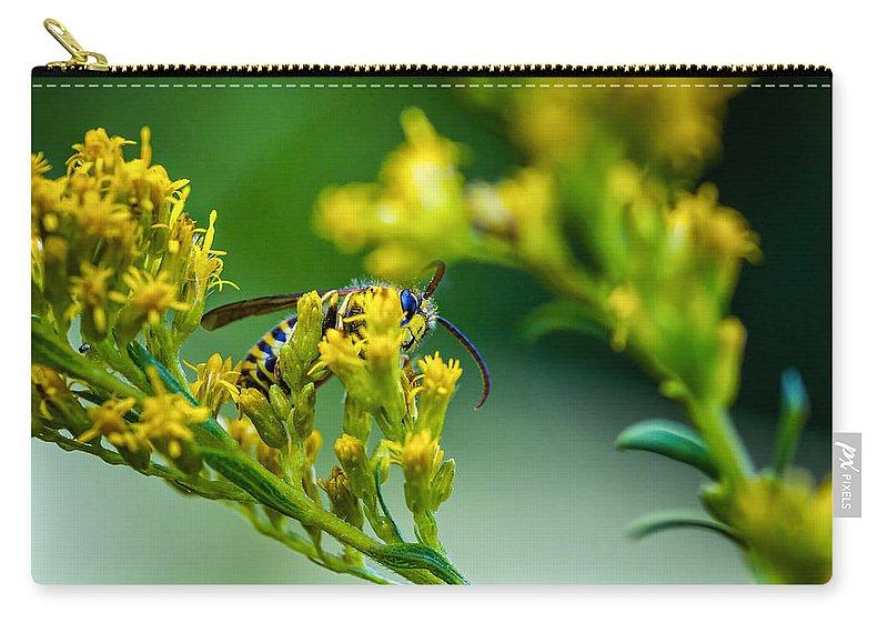 Steve Harrington Carry-all Pouch featuring the photograph Wasp by Steve Harrington