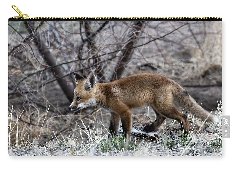 Red Fox Carry-all Pouch featuring the photograph Watching It by Steven Clair