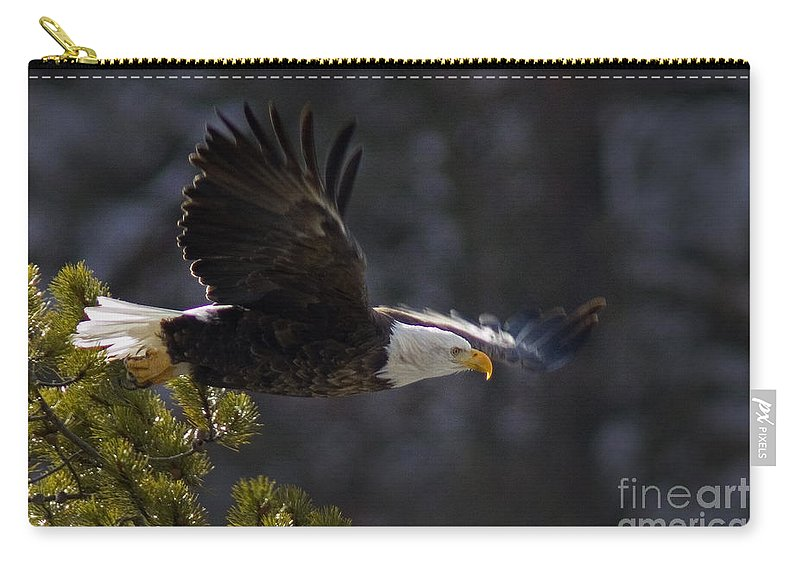 Haliaeetus Leucocephalus Carry-all Pouch featuring the photograph Watching The River by J L Woody Wooden