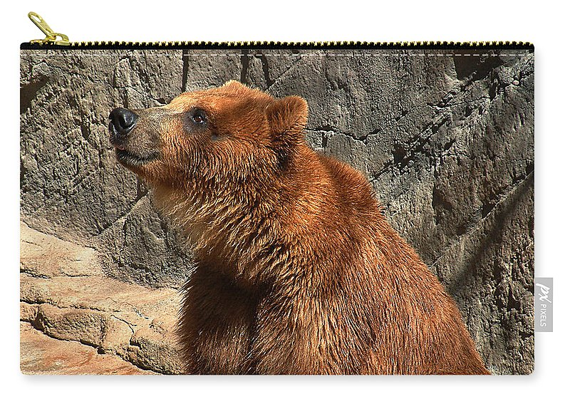 Bear Carry-all Pouch featuring the photograph Watching The Sun Set by RC deWinter