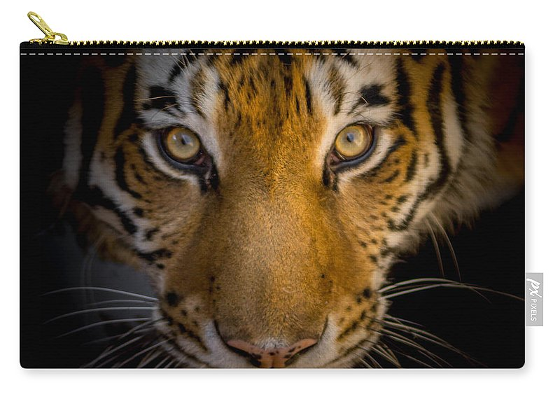Tiger Carry-all Pouch featuring the photograph Watching You by Ernie Echols