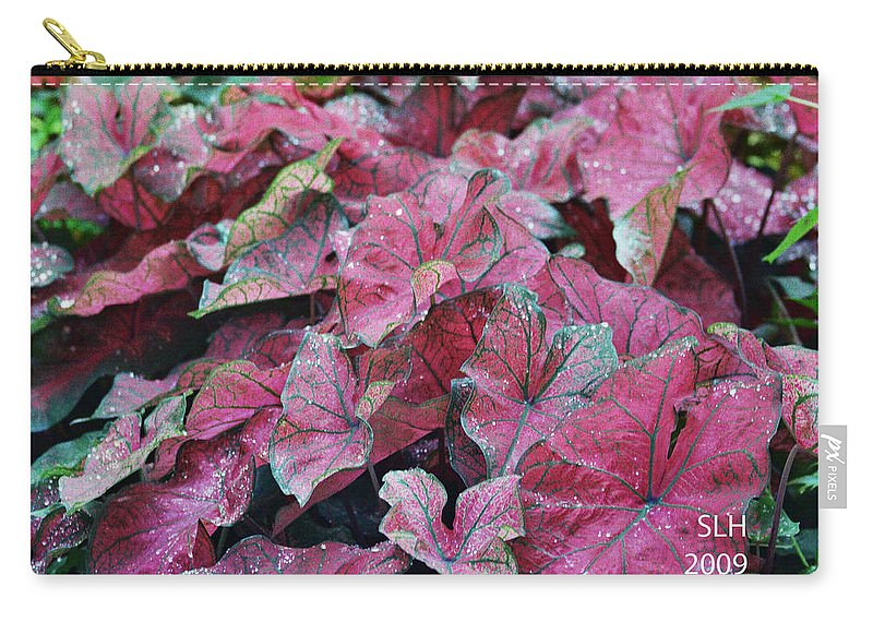 Sandra Carry-all Pouch featuring the photograph Water Drops by Lee Hartsell