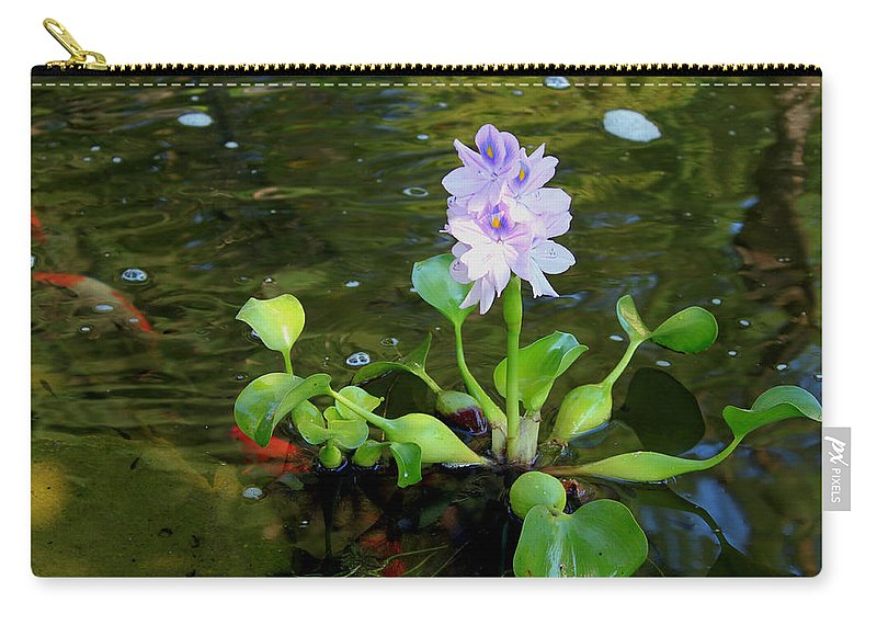 Backyard Carry-all Pouch featuring the painting Water Hyacinth Float by Hanne Lore Koehler