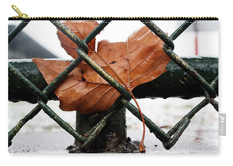 Water Carry-all Pouch featuring the photograph Water Leaf by Mark Ashkenazi