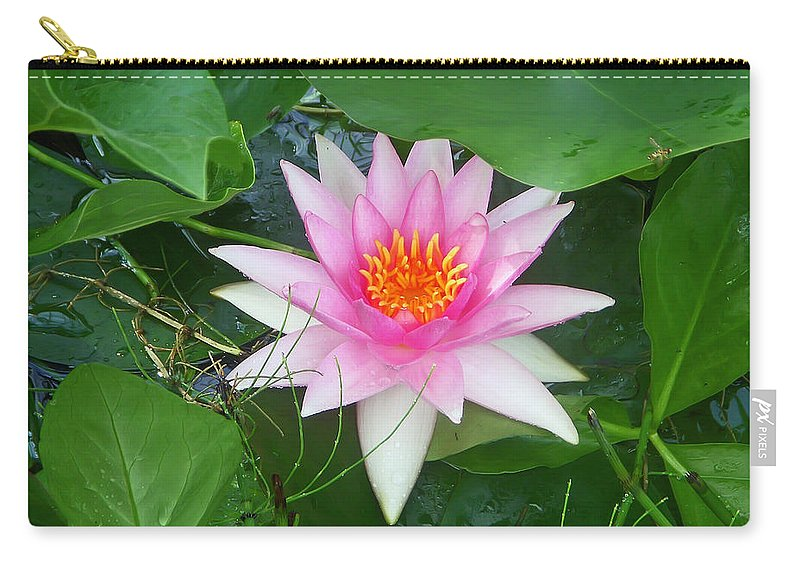 Flower Carry-all Pouch featuring the photograph Water Lily by Aimee L Maher ALM GALLERY