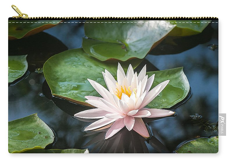 Water Lily Carry-all Pouch featuring the photograph Water Lily And Lily Pads by Donald Spencer