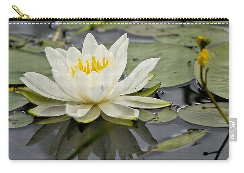 Water Lily Carry-all Pouch featuring the photograph Water Lily Pictures 45 by World Wildlife Photography