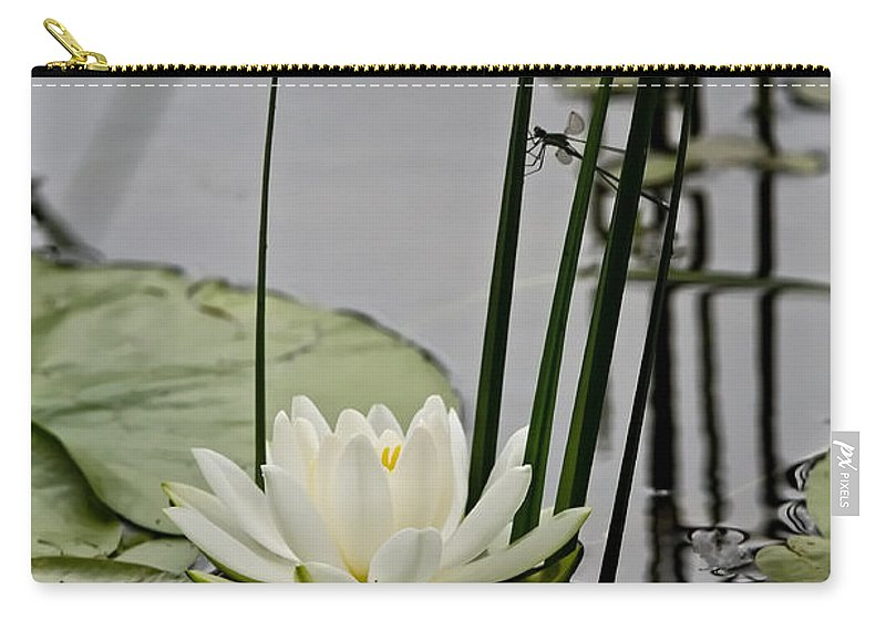 Water Lily Carry-all Pouch featuring the photograph Water Lily Pictures 48 by World Wildlife Photography