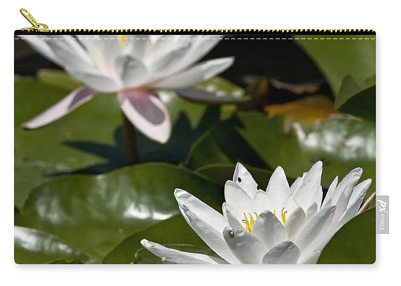 Water Lily Carry-all Pouch featuring the photograph Water Lily Pictures 75 by World Wildlife Photography