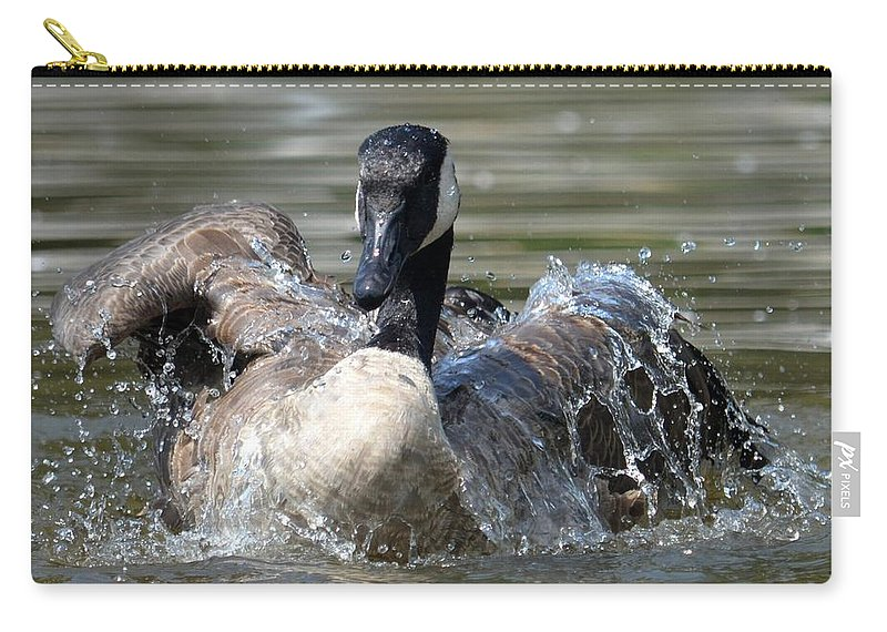 Water Logged - Canadian Goose Carry-all Pouch featuring the photograph Water Logged - Canadian Goose by Maria Urso