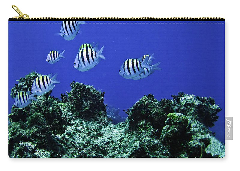 Deep Sea Carry-all Pouch featuring the photograph Water World One by Ken Frischkorn