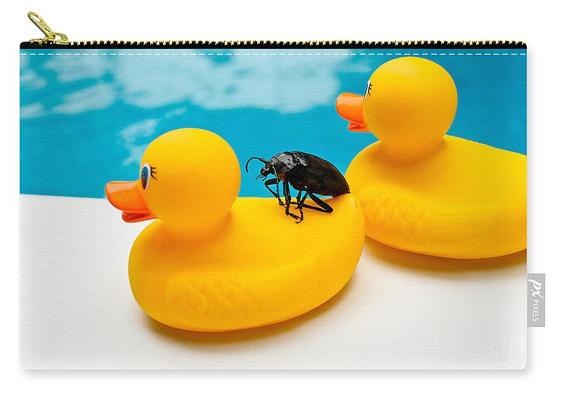 Absurd Carry-all Pouch featuring the photograph Waterbug Takes Yellow Taxi by Amy Cicconi