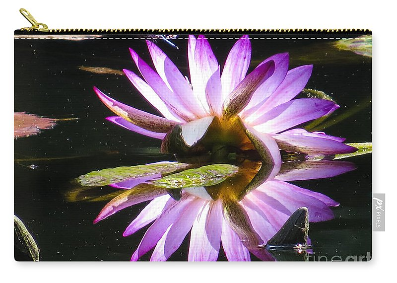 Waterlily Carry-all Pouch featuring the photograph Waterlily And Dragonfly by Zina Stromberg