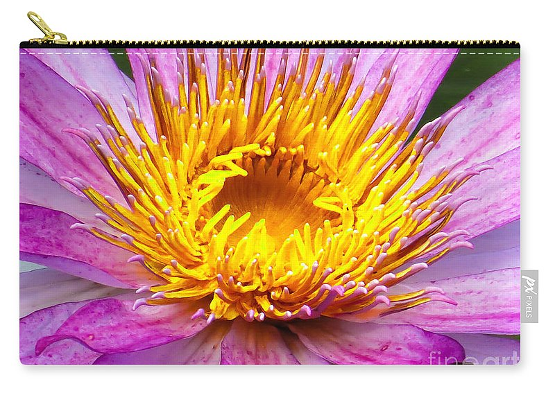 Waterlily Carry-all Pouch featuring the photograph Waterlily by Zina Stromberg