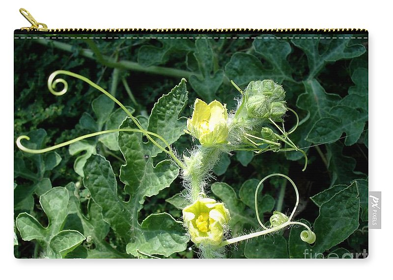 Watermelon Carry-all Pouch featuring the photograph Watermelon Flowers And Vine by Kerri Mortenson