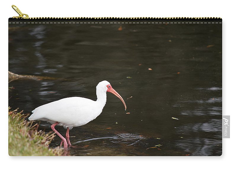 Florida Carry-all Pouch featuring the photograph Water's Great by Linda Kerkau