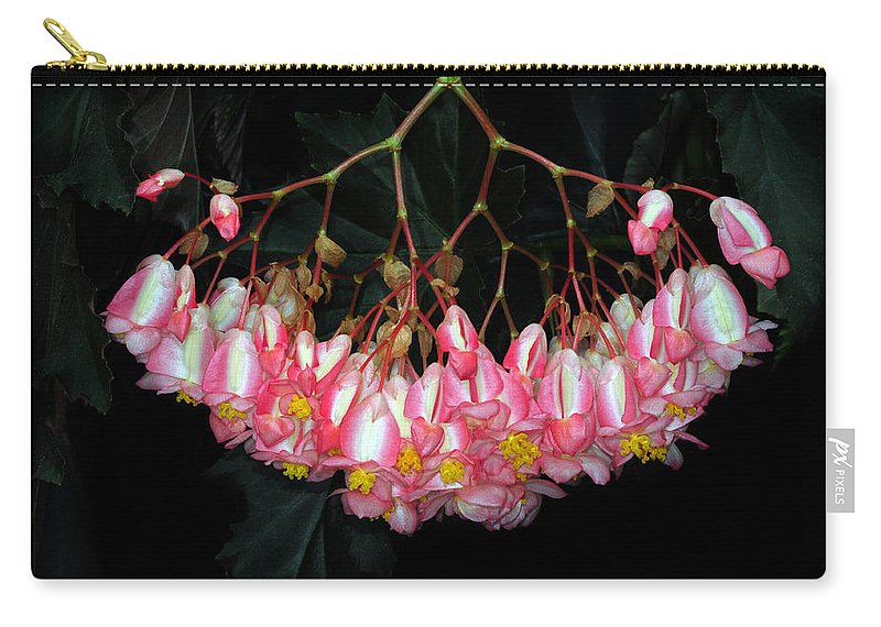 Begonia Carry-all Pouch featuring the photograph Wax Begonia by Dave Mills