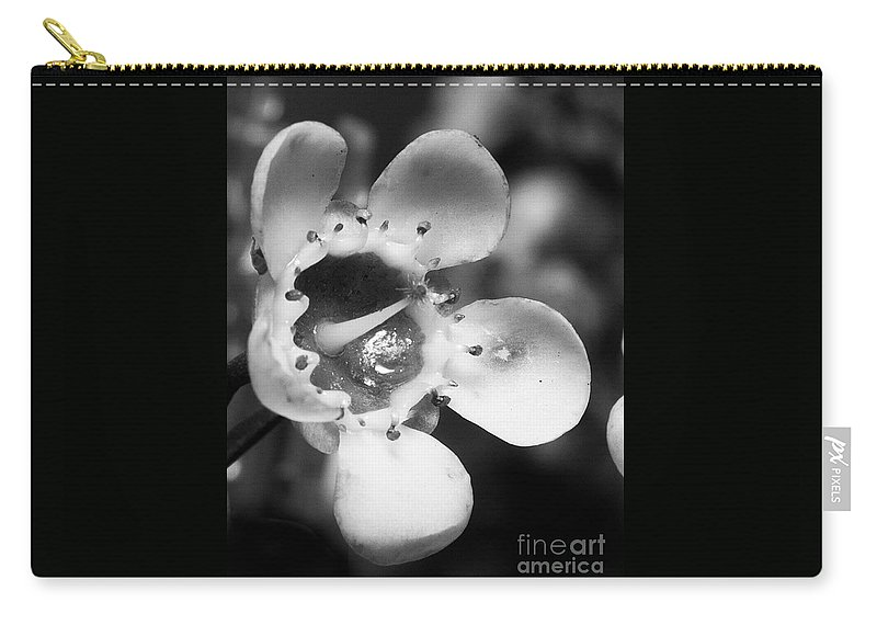 Black Carry-all Pouch featuring the photograph Wax Flower by Photos By Cassandra