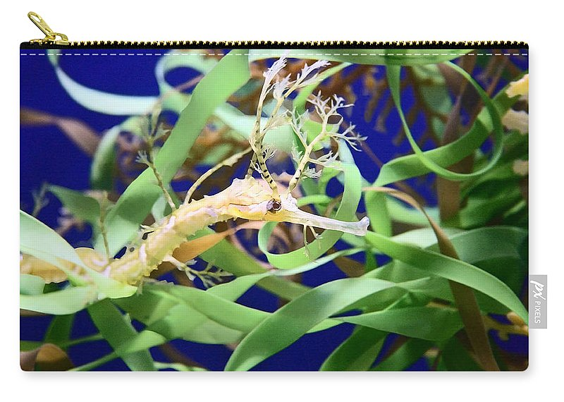 Weedy Sea Dragon Carry-all Pouch featuring the photograph Weedy Sea Dragon by Ellen Henneke