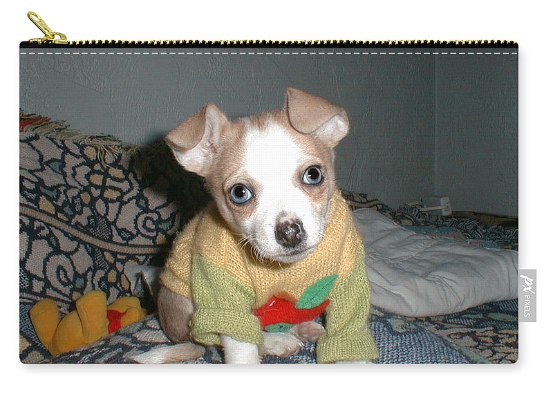 Chihuahua Carry-all Pouch featuring the photograph Welcome Crystal Blue by Leah Delano