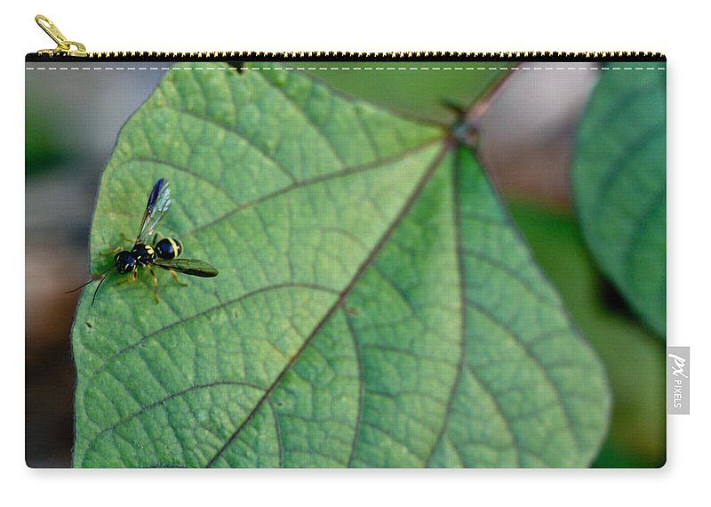 Insect Carry-all Pouch featuring the photograph Well Dressed Hymenopteran by Douglas Barnett
