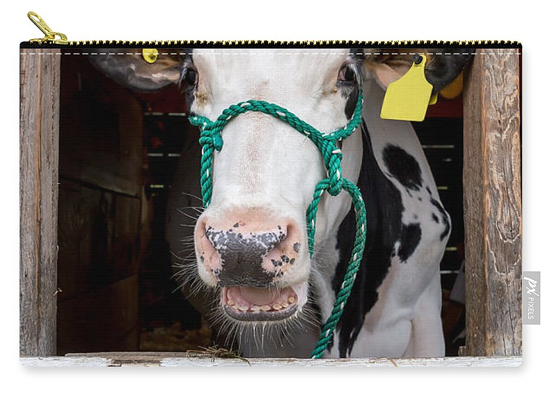 Tunbridge Carry-all Pouch featuring the photograph Well Hello There by Edward Fielding