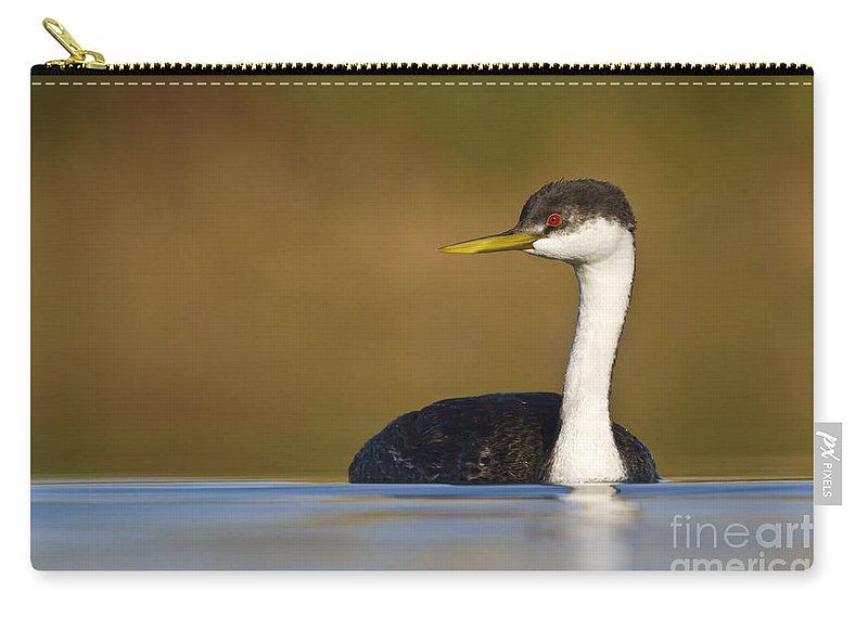 Grebe Carry-all Pouch featuring the photograph Western Grebe On The Lake by Bryan Keil