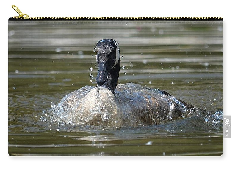 Wet And Wild - Canadian Goose Carry-all Pouch featuring the photograph Wet And Wild - Canadian Goose by Maria Urso