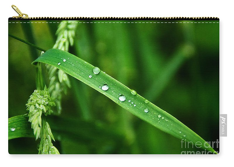 Grass Carry-all Pouch featuring the photograph Wet Grasses by Susie Peek