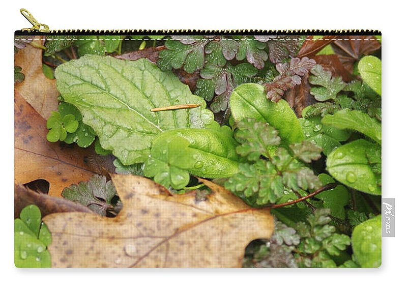 Leaves Carry-all Pouch featuring the photograph Wet Leaves by Belinda Greb